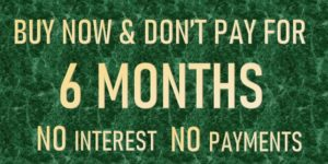 Buy Now Dont pay for 6 months (OAC) - expires August 31 2020